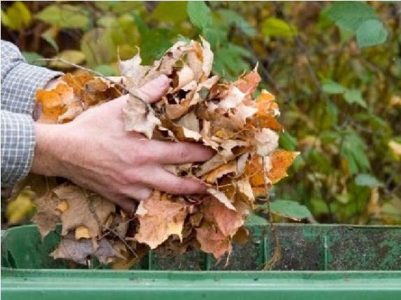 Garden waste stock image