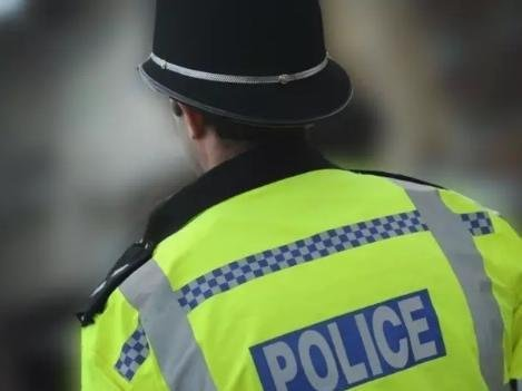 Police are appealing for witnesses after an attempted knife-point dog theft
